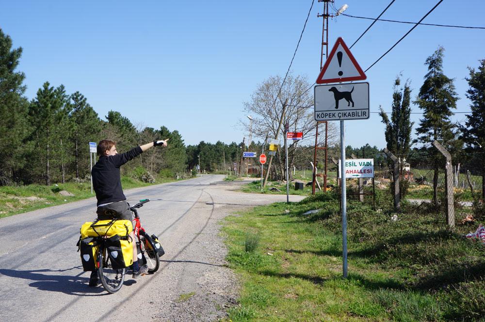 Uwaga pies! Ten znak powinni w Turcji stawiać przy każdej drodze. Na szczęście psiaczki w pogodny dzień najczęściej wolą wygrzewać się na słońcu.
