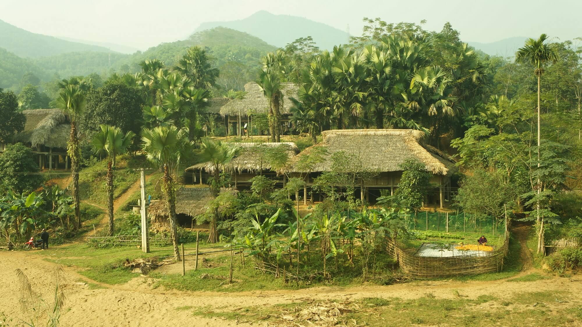 wietnam-smucic-9