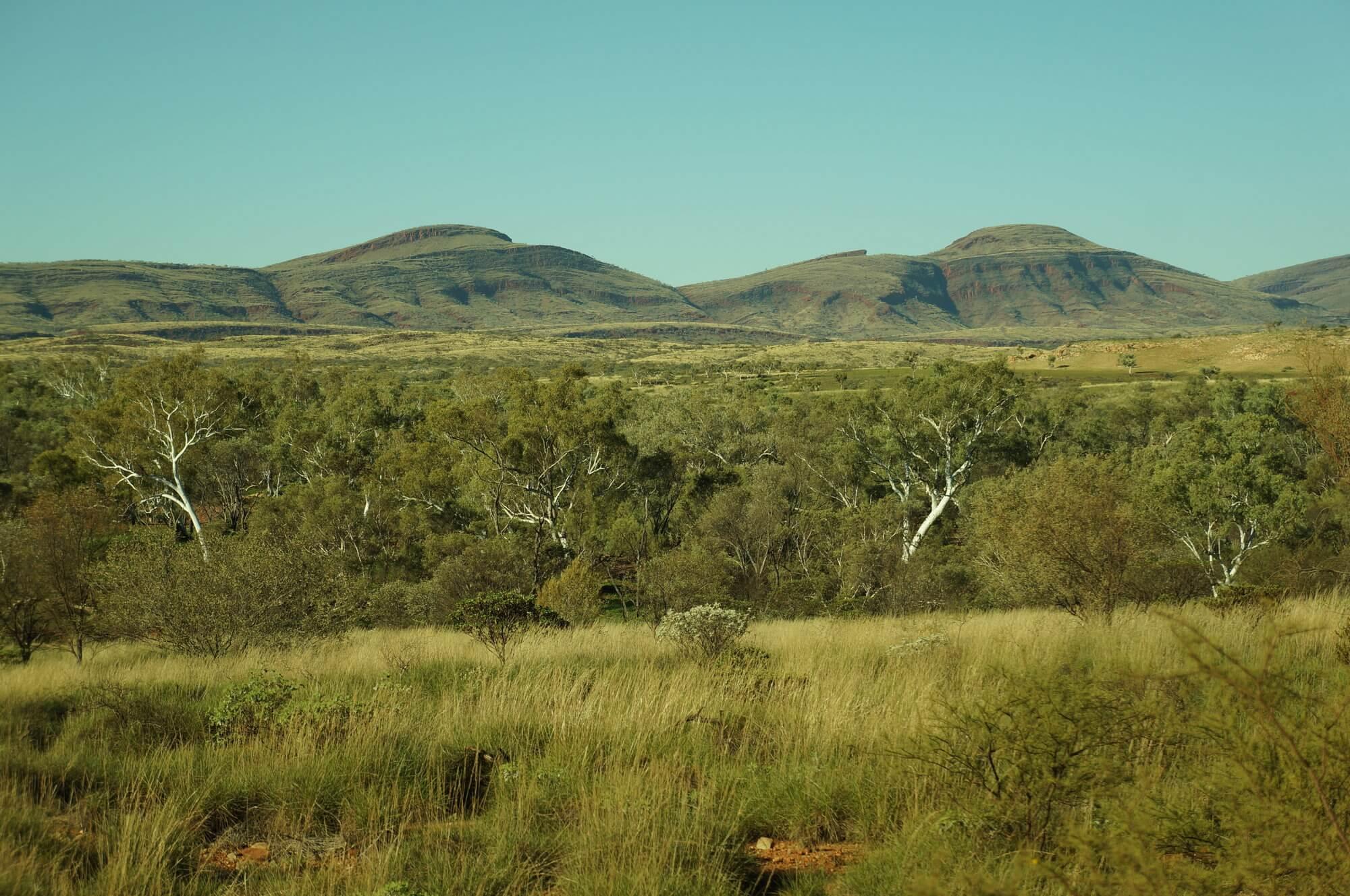 australia-zachodnia-bloody-long-way-9