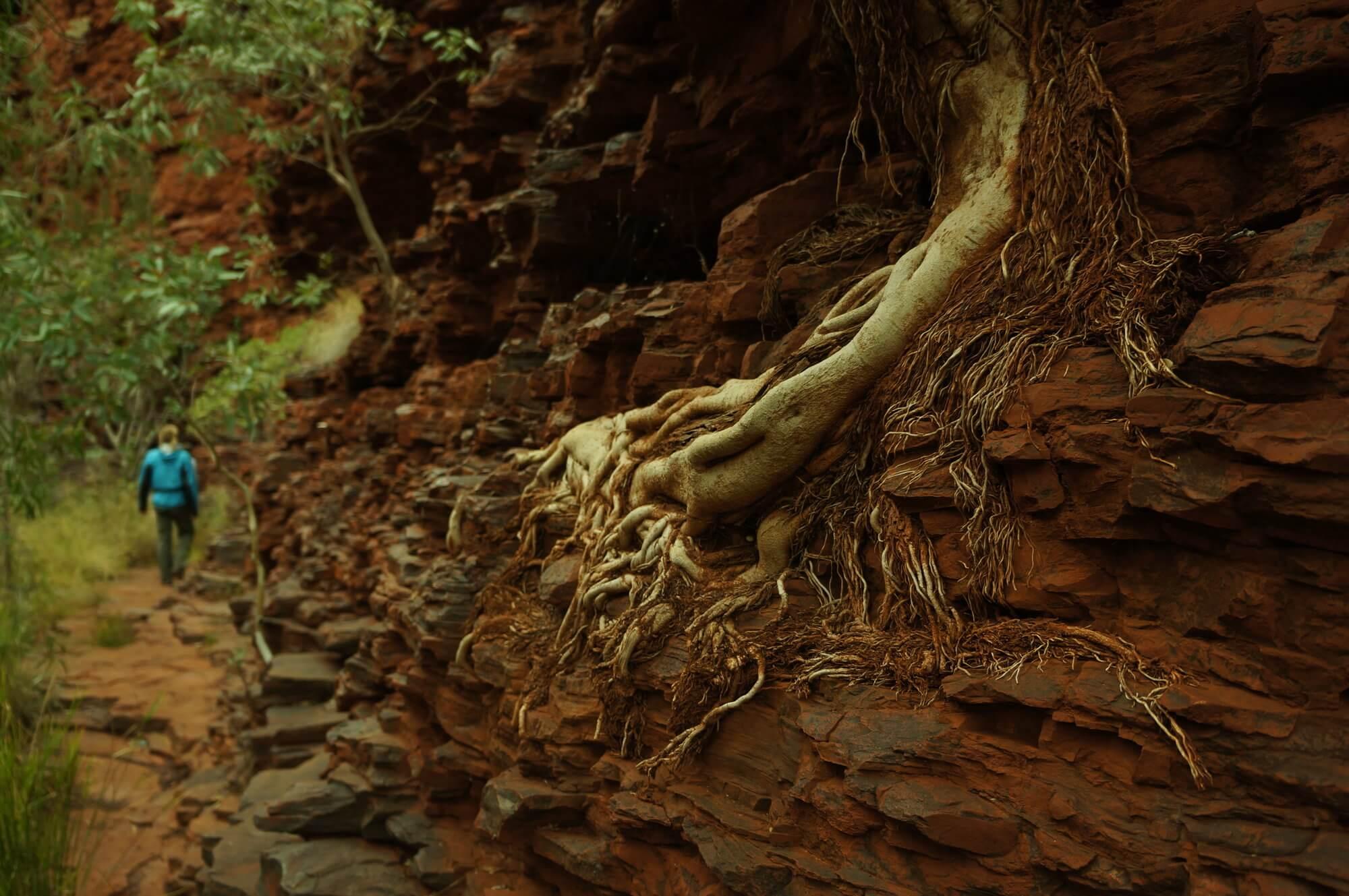 australia-zachodnia-park-narodowy-karijini-10