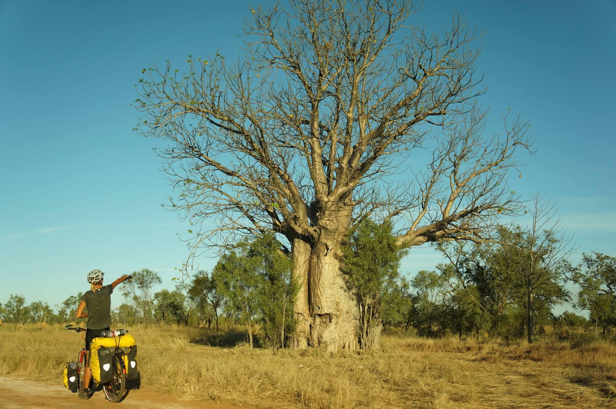 australia-przyroda-outback-1