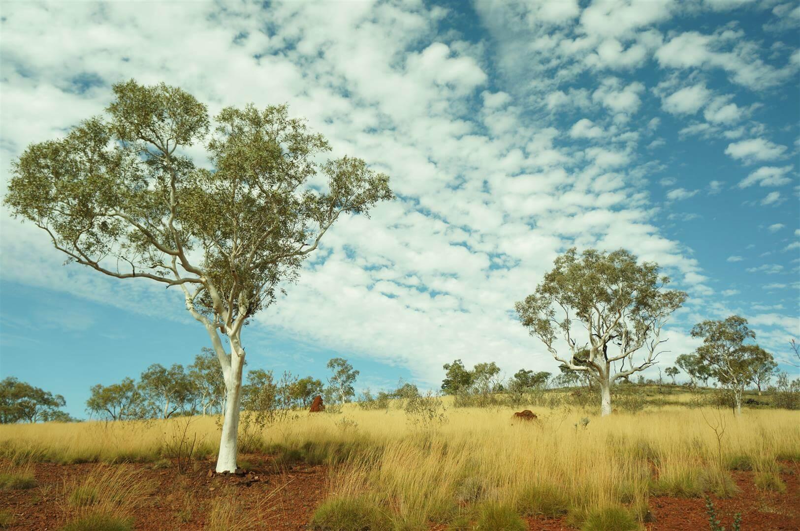 australia-zachodnia-karijini-national-park