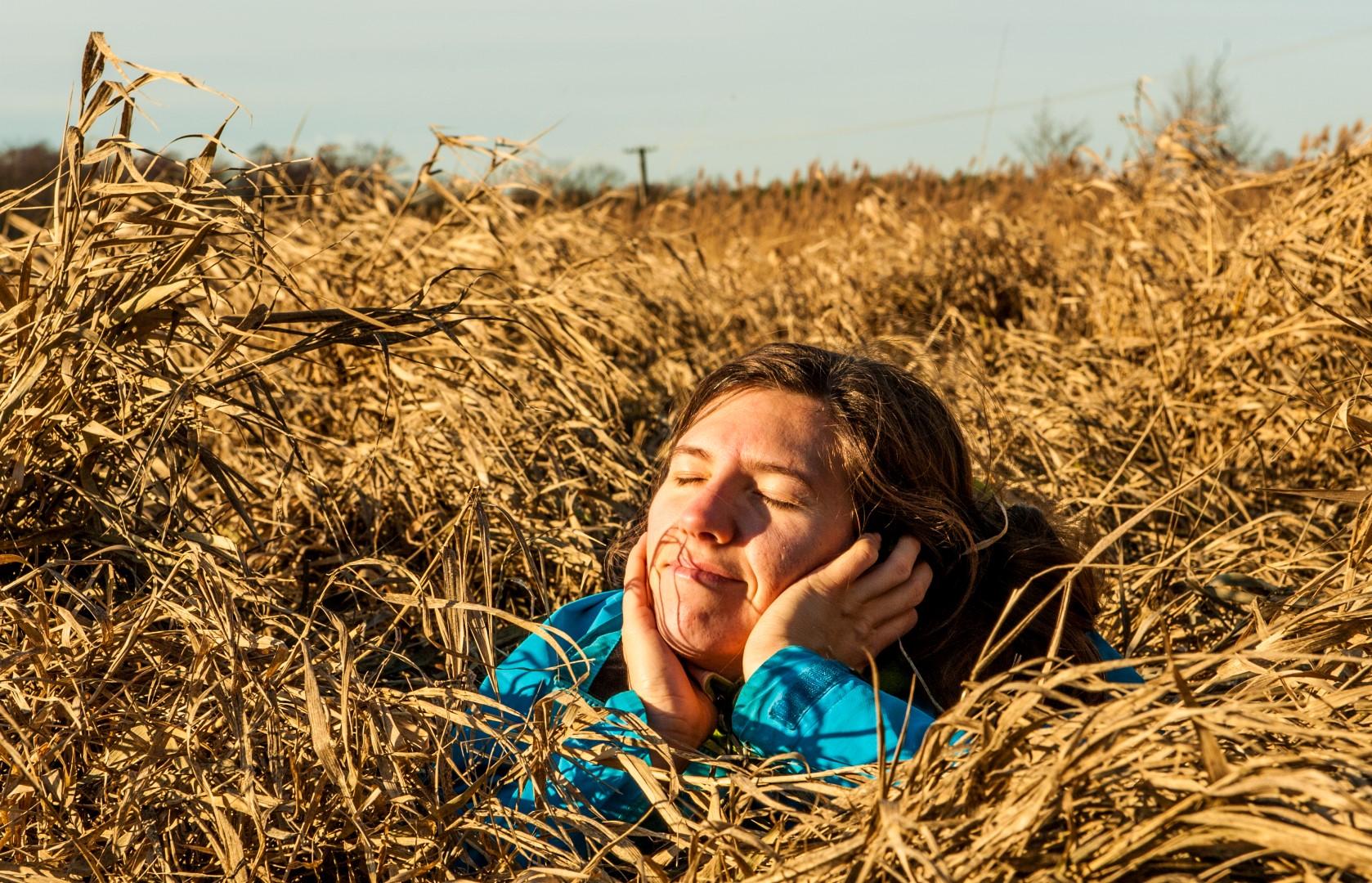 bolimowski-park-krajobrazowy-bagnisko-mazna-w-trawie