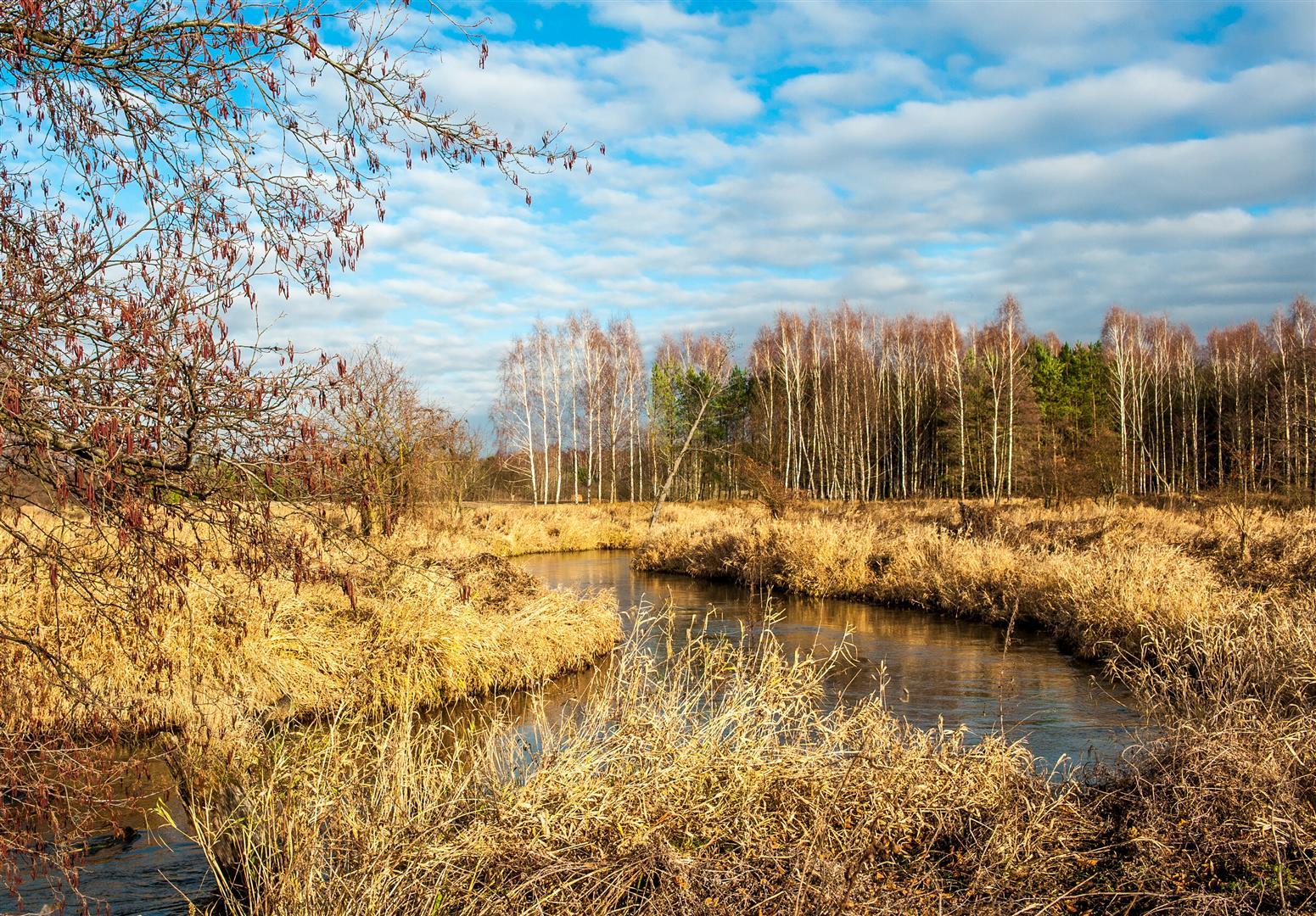 bolimowski-park-krajobrazowy-rawka-min