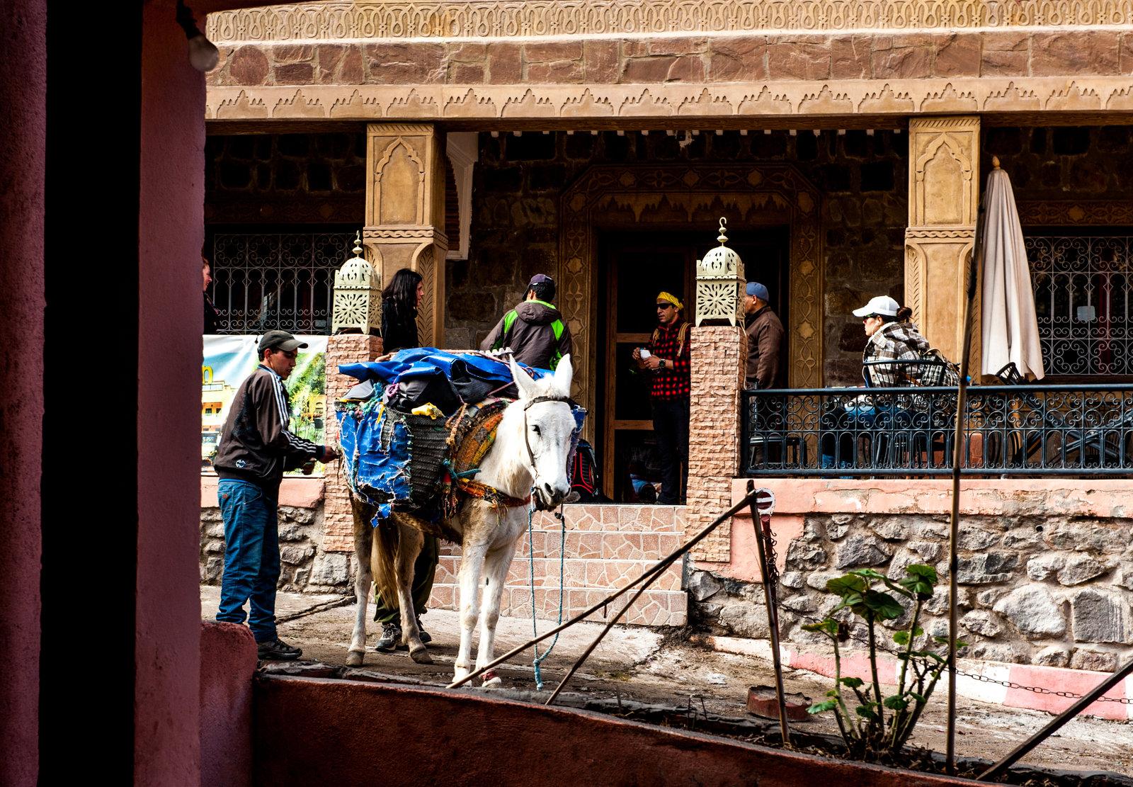 maroko-antyatlas-trekking-marrakesz-1
