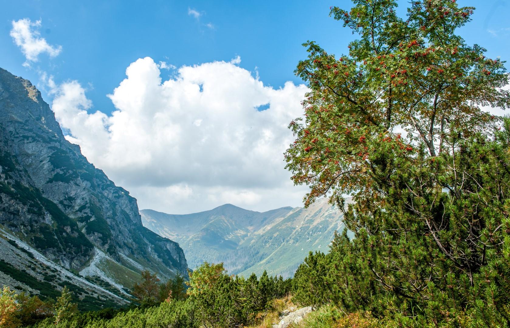 tatry-hlinska-dolina