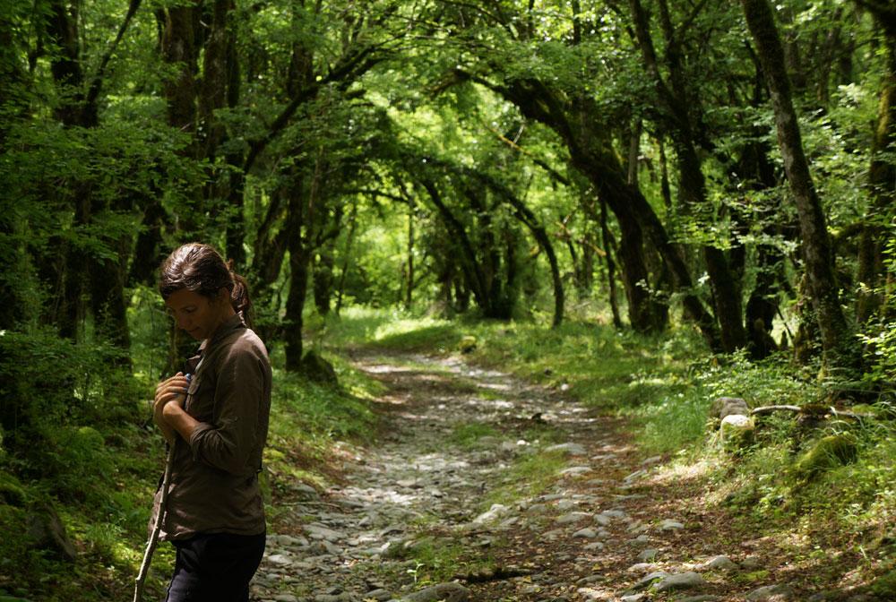 Rezerwat Lagodekhi