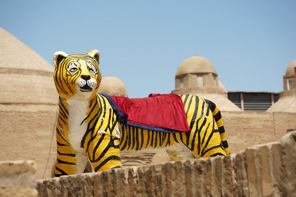 A może pamiątkowe zdjęcie z tygryskiem?