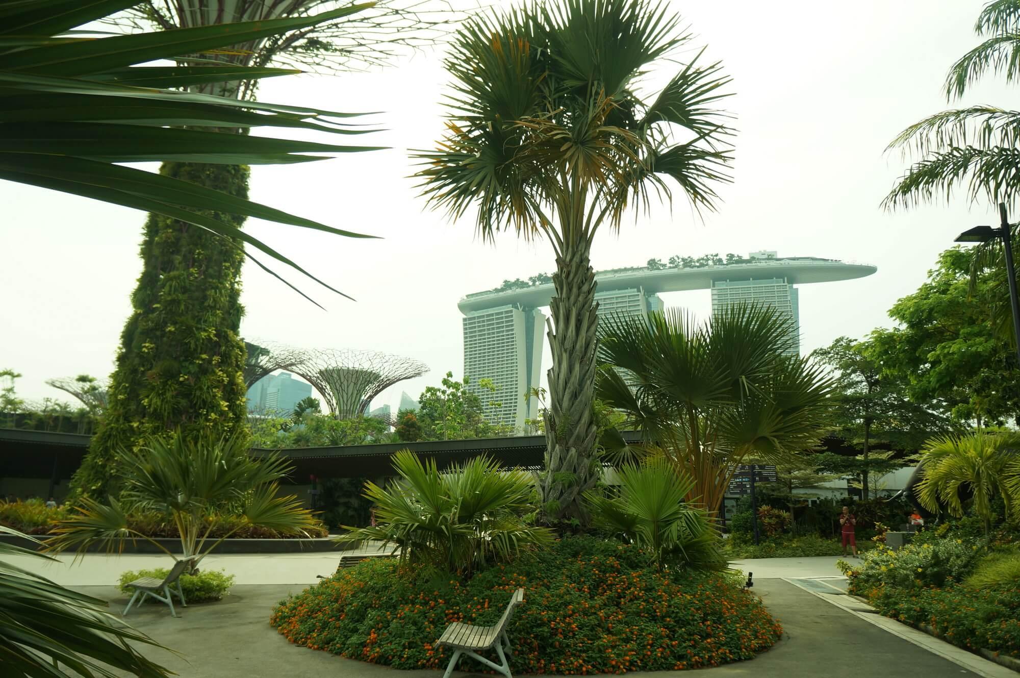 singapur-12