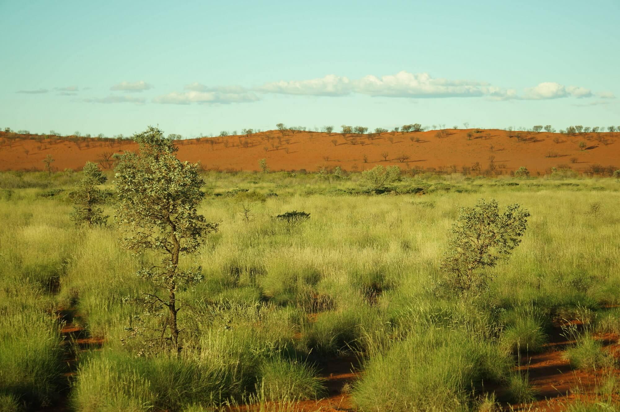 australia-niebo-czy-pieklo-10