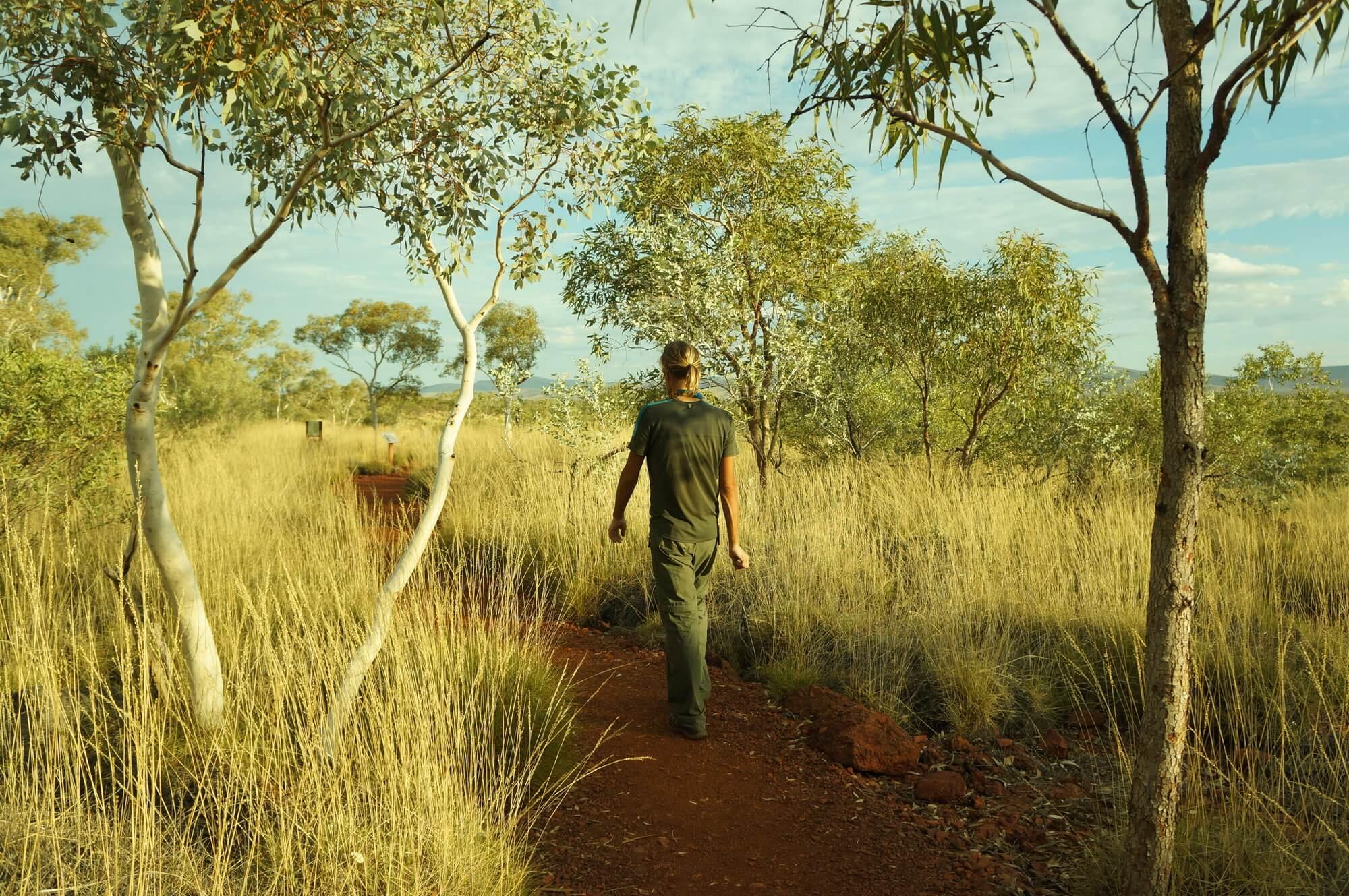 australia-zachodnia-park-narodowy-karijini-3
