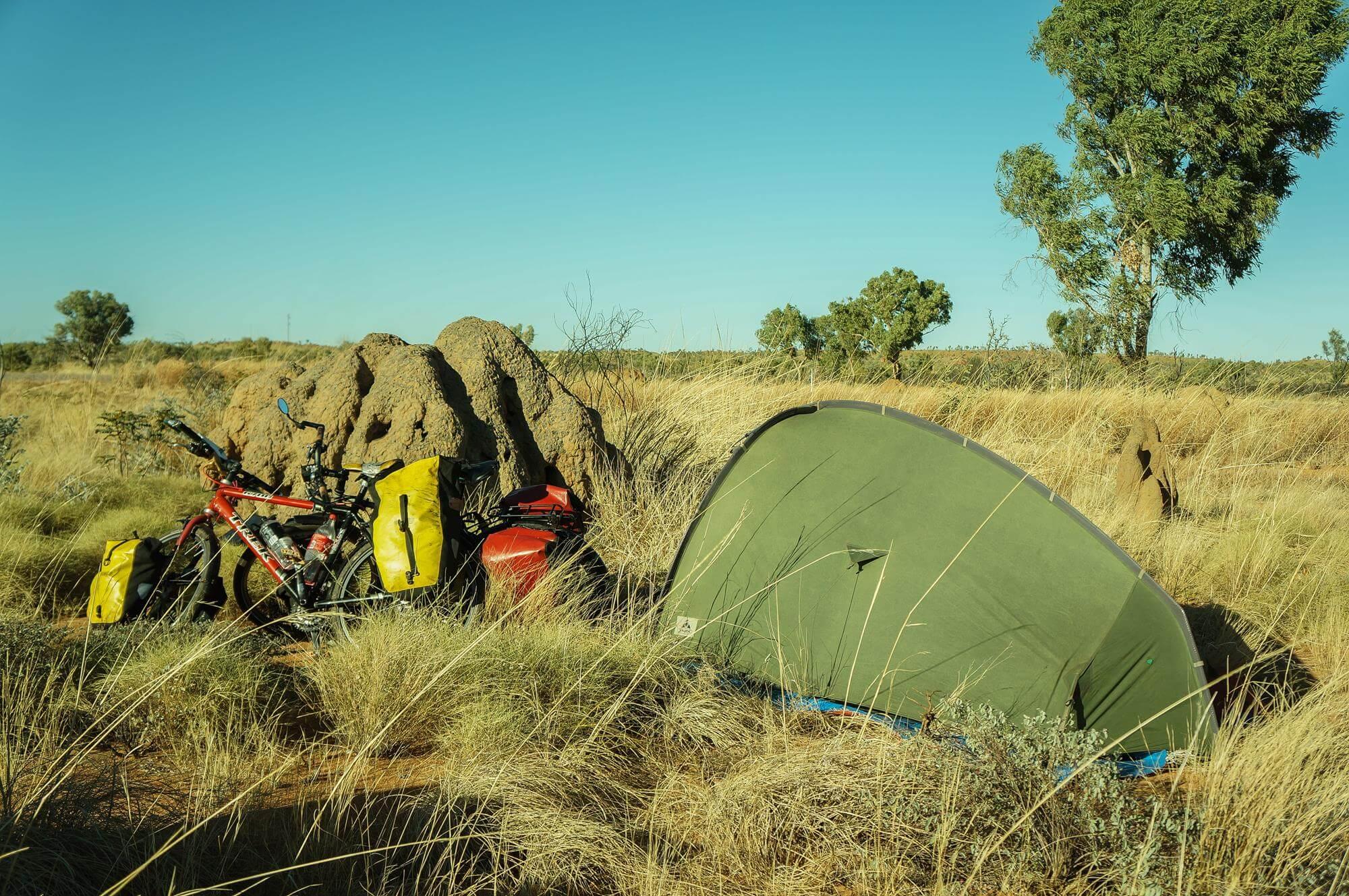 australia-schowani-za-termitiera