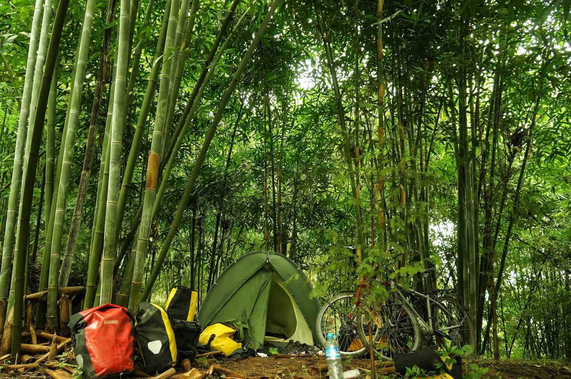 namiot Vaude Taurus Chiny bambusowy las