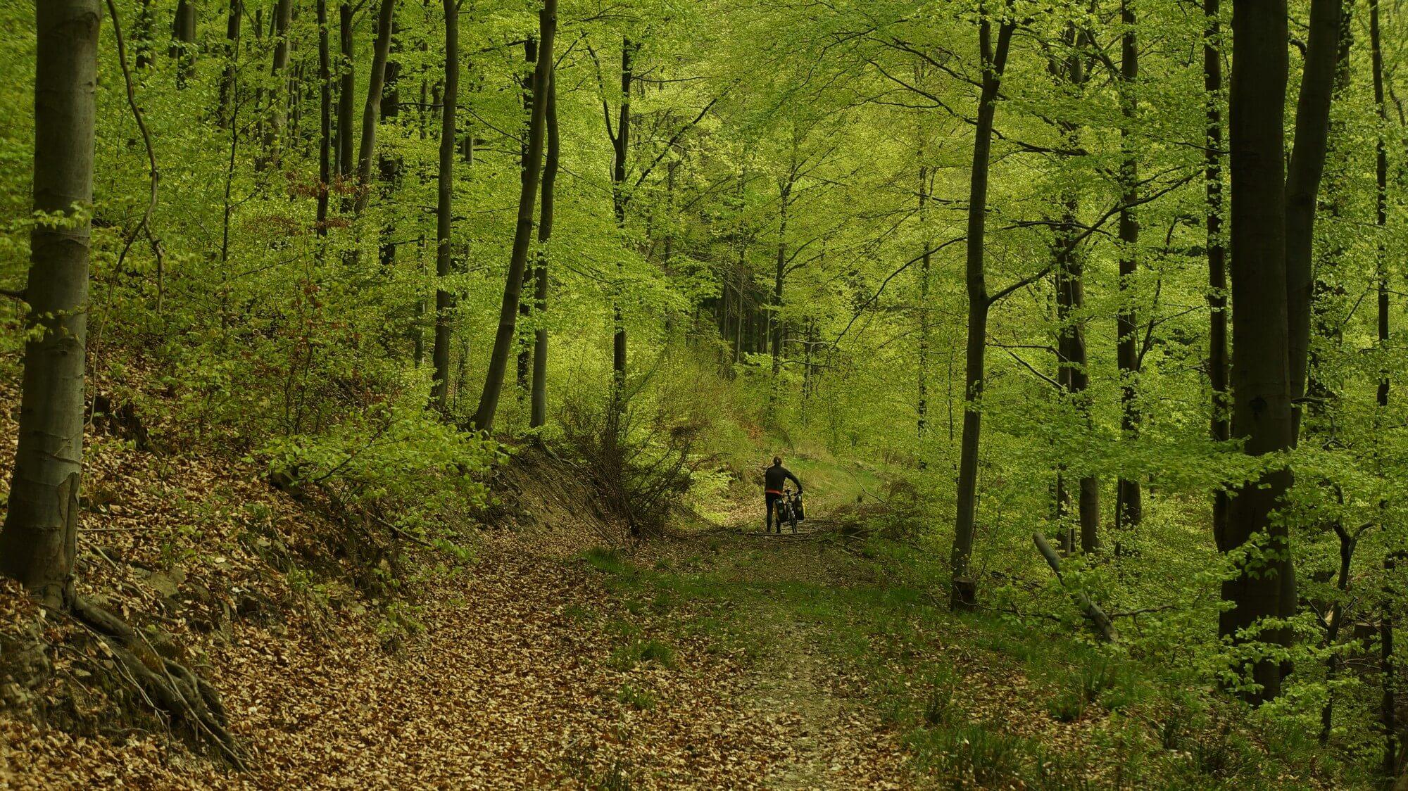 gory-sowie-rowerem-na-weekend-21