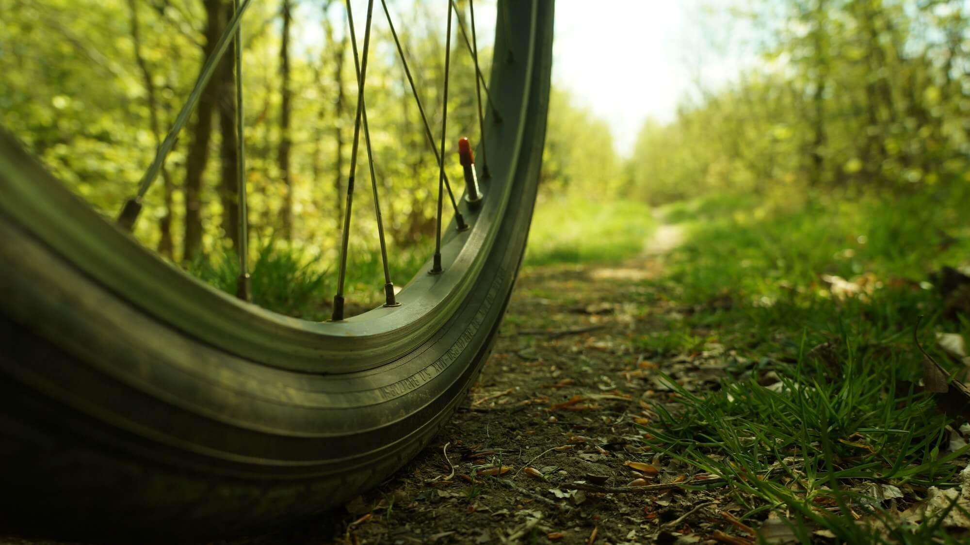 gory-sowie-rowerem-na-weekend-26