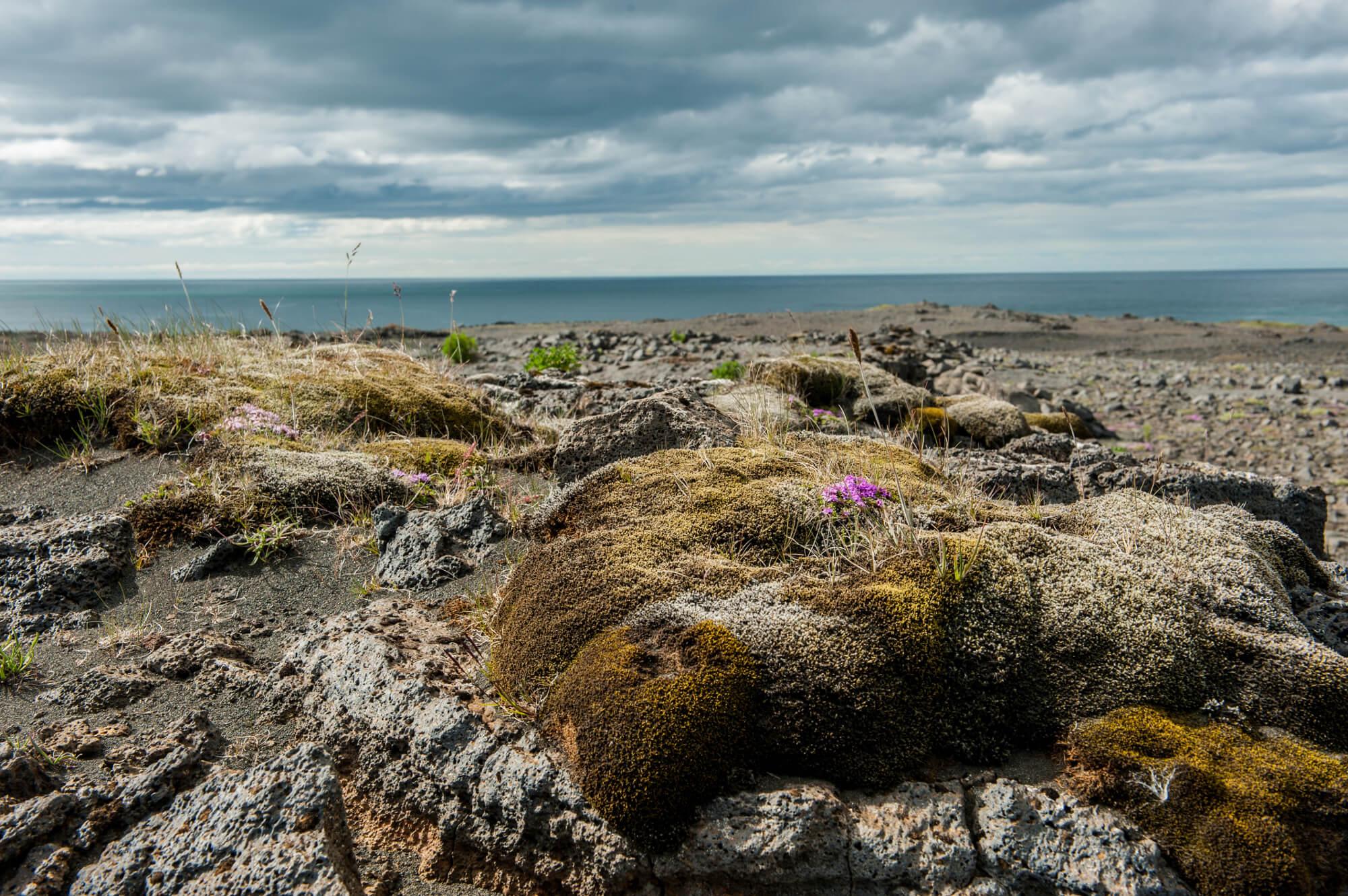 islandia-mech