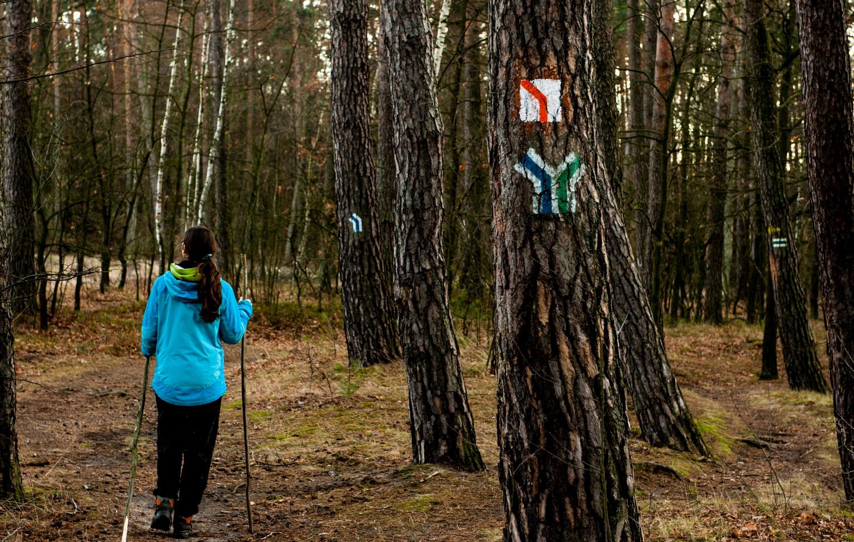 bolimowski-park-krajobrazowy-szlaki